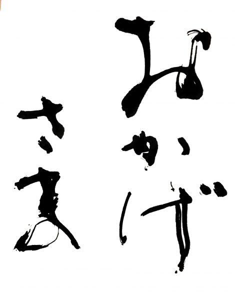 石川県議会議員 選挙スローガン『おかげさま』